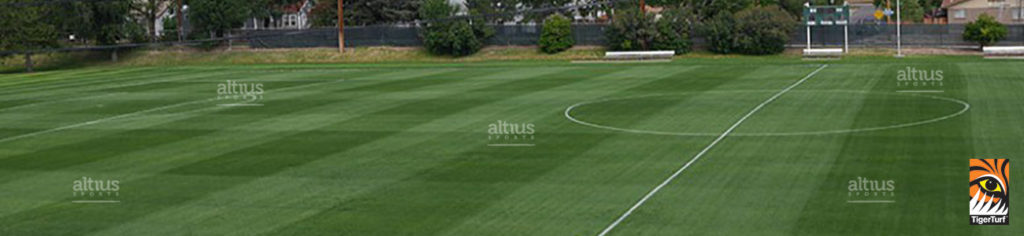 Hybrid turf pitch