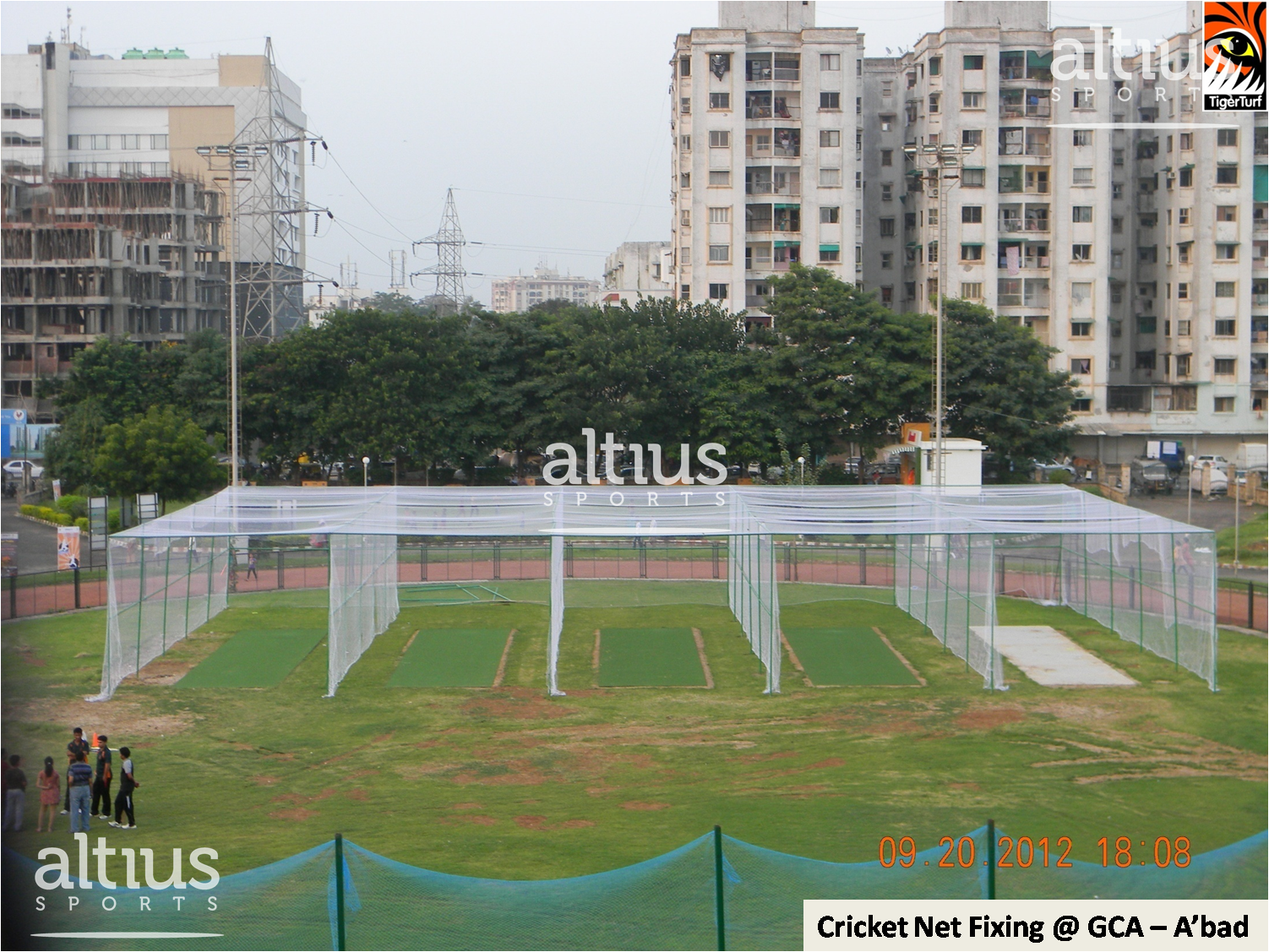 altius-cricket-turf