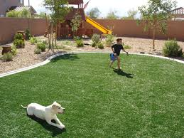 dogs-on-turf